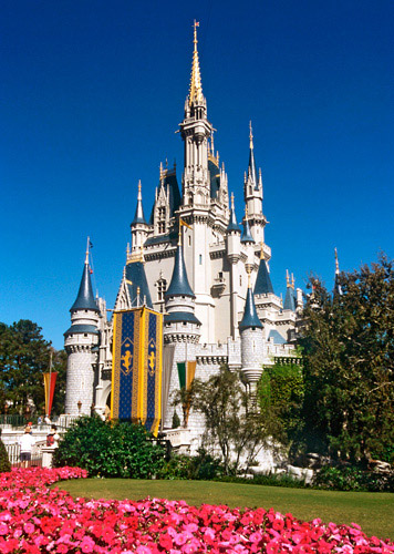 Disney_World__Theme_Parks_(029)